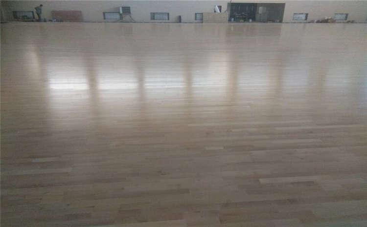 篮球场木地板生虫了怎么办?