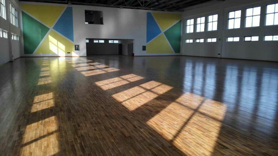 杭州湾新区世纪城实验小学欧氏地板