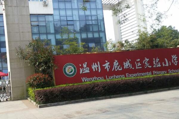 温州市鹿城区实验小学羽毛球馆木地板成功案例