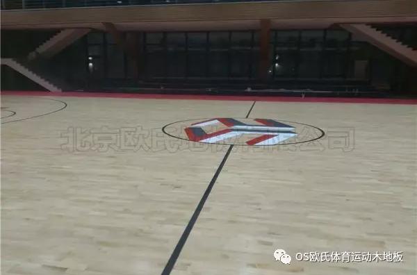 泉州盛荣集团篮球馆地板效果图2