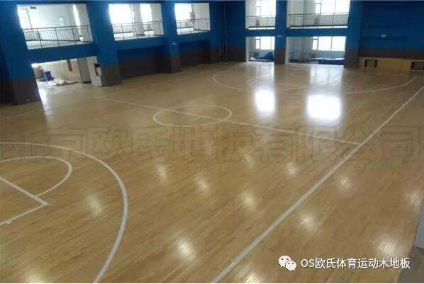 山西阳泉市城区行政审批服务中心篮球馆木地板案例图3