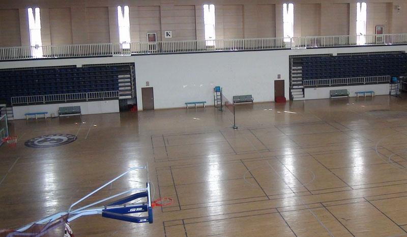 篮球运动地板添加想要的颜色