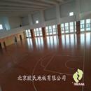 江苏泰州体育运动木地板-泰州双河初中枫木运动木地板案例