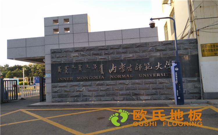 内蒙古师范大学体育学院训练馆运动木地板案例