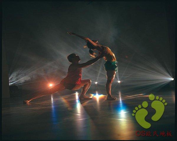 欧氏舞蹈木地板